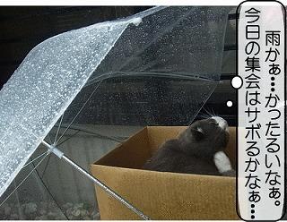 雨かぁ・・・