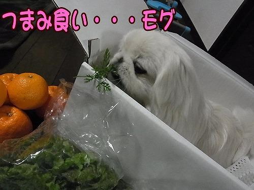 つまみ食い