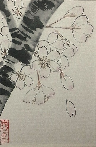 ばばさんの桜
