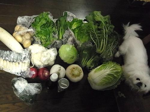 野菜ともち