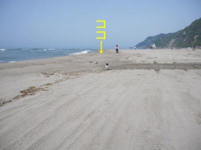 2010505浜辺ダッシュ