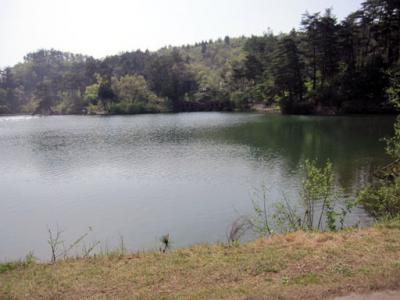 20100505大平森林公園