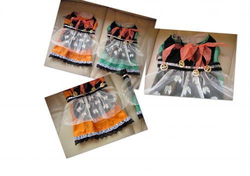 20101011仮装衣装