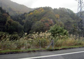 20101103旅行1-新潟の紅葉