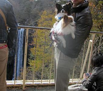 20101103旅行1-華厳の滝とピョンテン