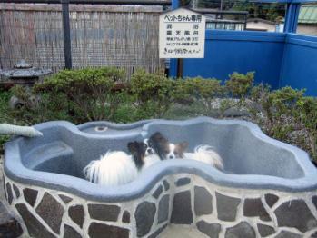 20101104ピョンテン露天風呂