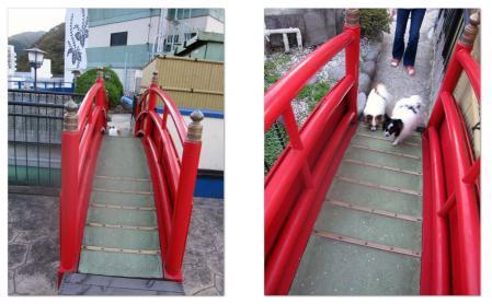 20101104ランの赤い橋