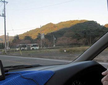 20101104紅葉