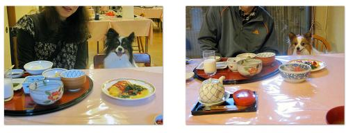 20101105朝食