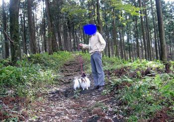 20101105アロマの森