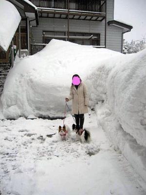 20110131大雪-3