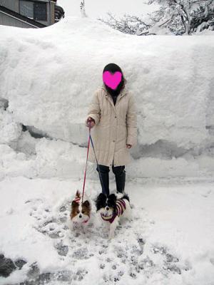 20110131大雪-1