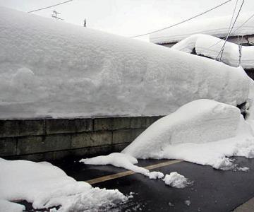 20110131大雪-4