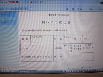 0127_10_20110128102038.jpg