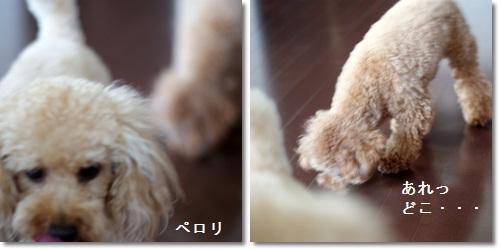 7-2-5.jpg