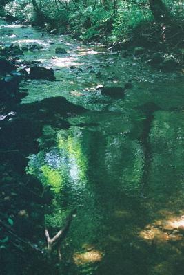 達沢不動滝の近隣