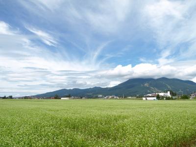 磐梯山と蕎麦の花2011@白鳥浜