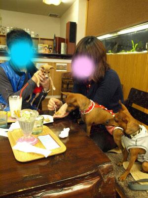 リンダちゃん&ひめちゃん&アクア@K-STYLE