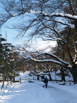鶴ヶ城公園内