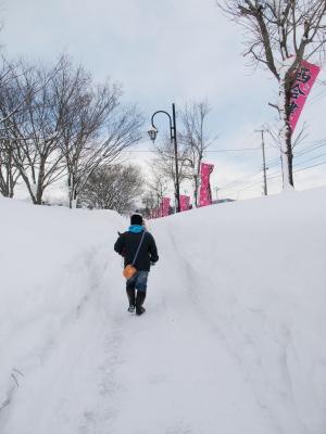 第22西会津雪国まつり