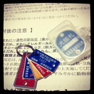 会津若松市の狂犬病予防注射済証の札(アクアの札)