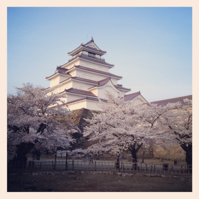 鶴ヶ城天守閣と桜_2012/04/25夕方