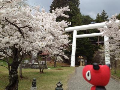 あかべぇ@土津神社の桜_2012/05/06