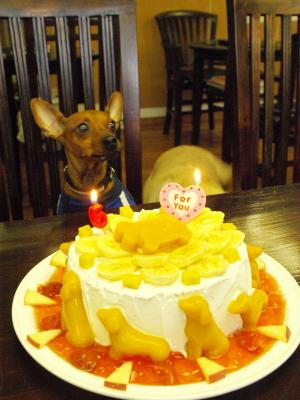 アクア6才になりました。七夕のお誕生会@K-STYLE