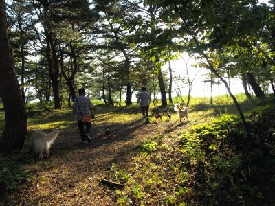 天神Dogs@天神浜(猪苗代湖)