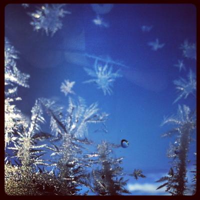 凍りついたフロントガラス(内側より撮影)