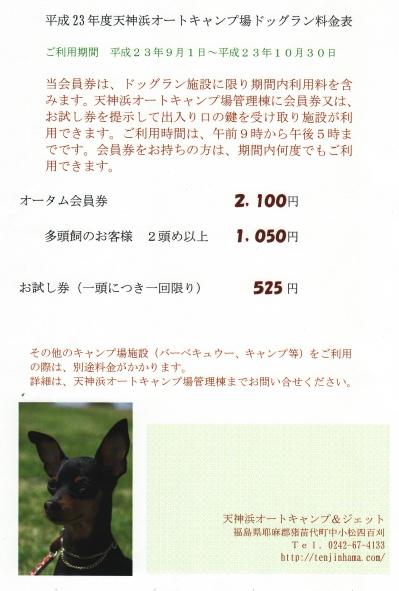 天神浜オートキャンプ場ドッグラン(2011オータム)