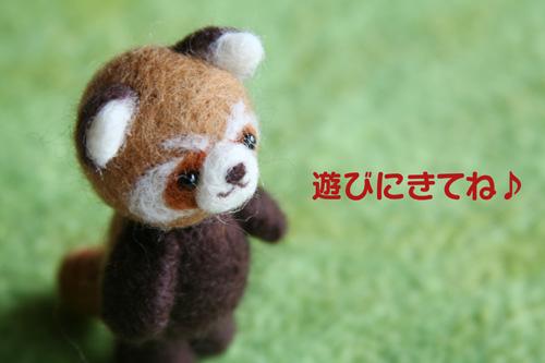 2011_0609_01.jpg
