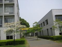 100504hiromi14.jpg