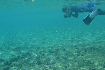 二日目マエダ岬海中1