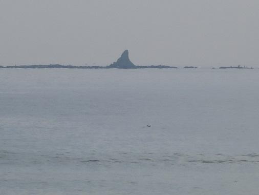 sazan-beach77.jpg