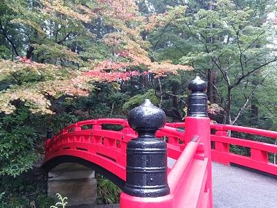 小国神社 2014.11.9-4