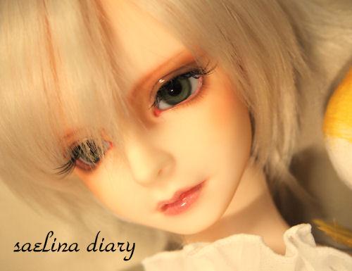 rosevia4.jpg