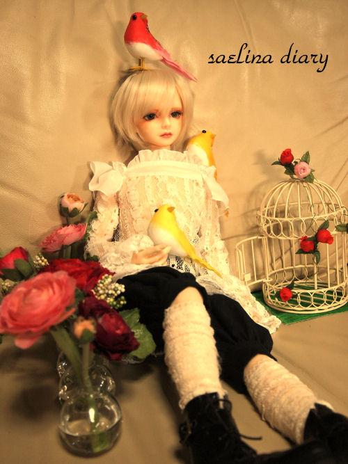 rosevia6.jpg