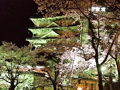 露天風呂夜桜a