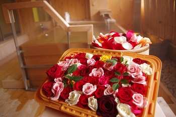 350薔薇