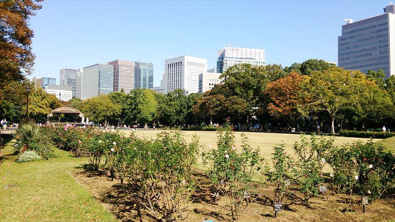 20141103001_R.jpg