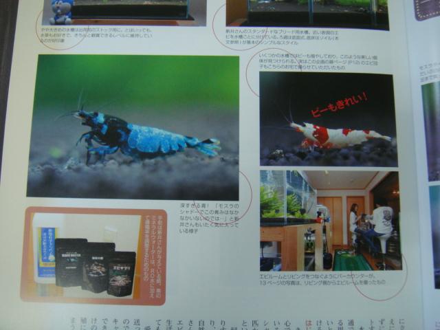 2011_1210_153801-DSC04761.jpg
