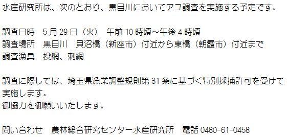 24.05.29 水研調査広報B (561x268)