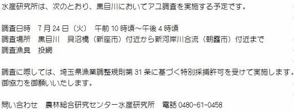 24.07.24 水研調査広報 (600x229)