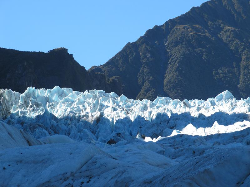 fox glacier walk3