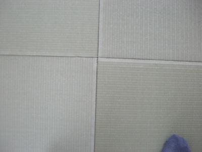 DSCN0906.jpg