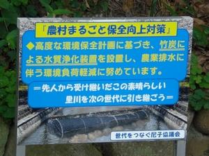 竹炭浄化1
