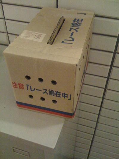 2011-0824箱1