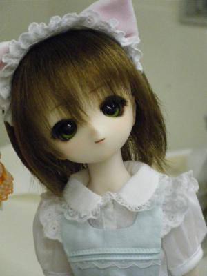 DSCF6548_convert_20100410002906.jpg