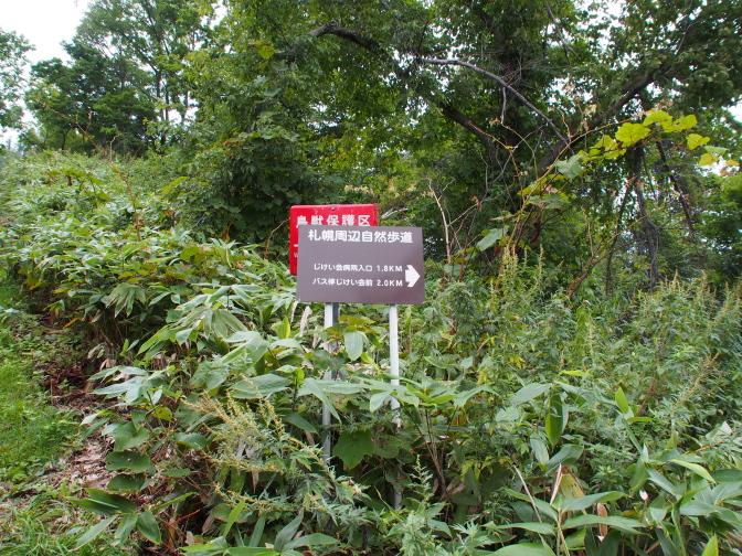 climbing-Moiwa201209_11t.jpg